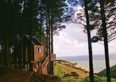 Raglan Treehouse